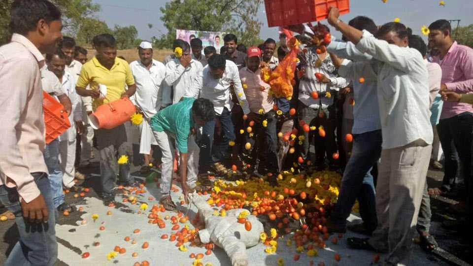 kisan sabha reaction on farmers strike