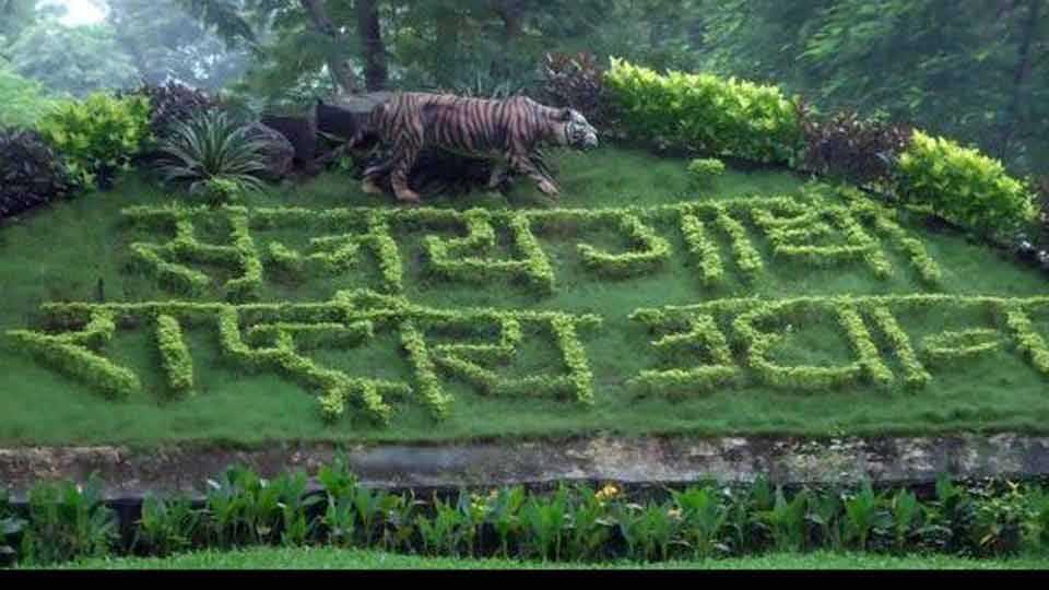 sanjay-gandhi-national-park