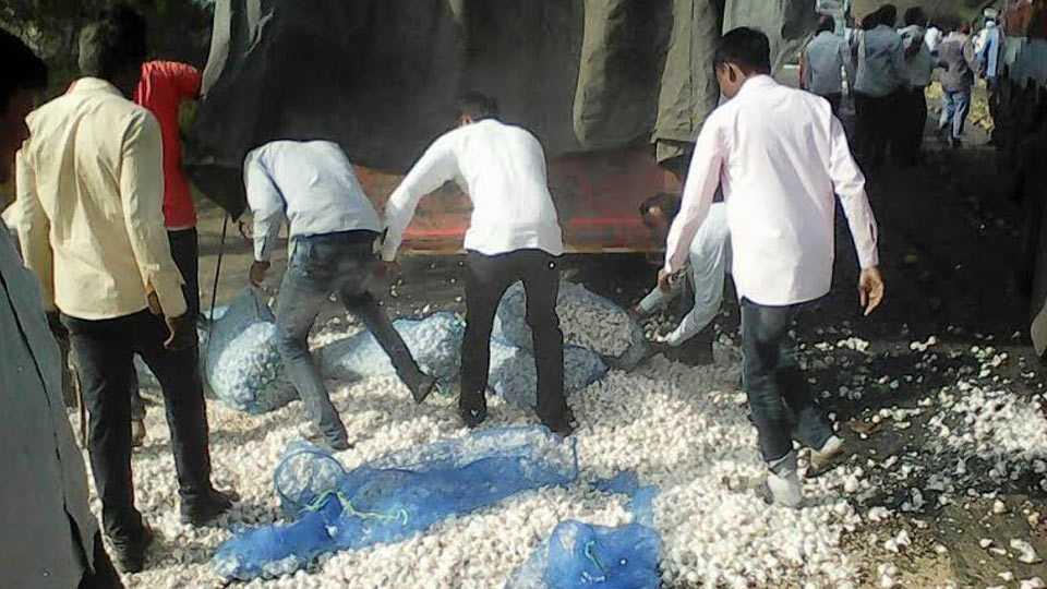 nashik news #farmerstrike in yevla