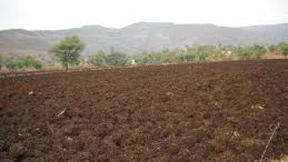 In the name of the deceased and the landowners the crop loan has been taken