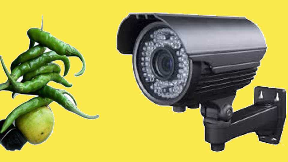 CCTV-Watch