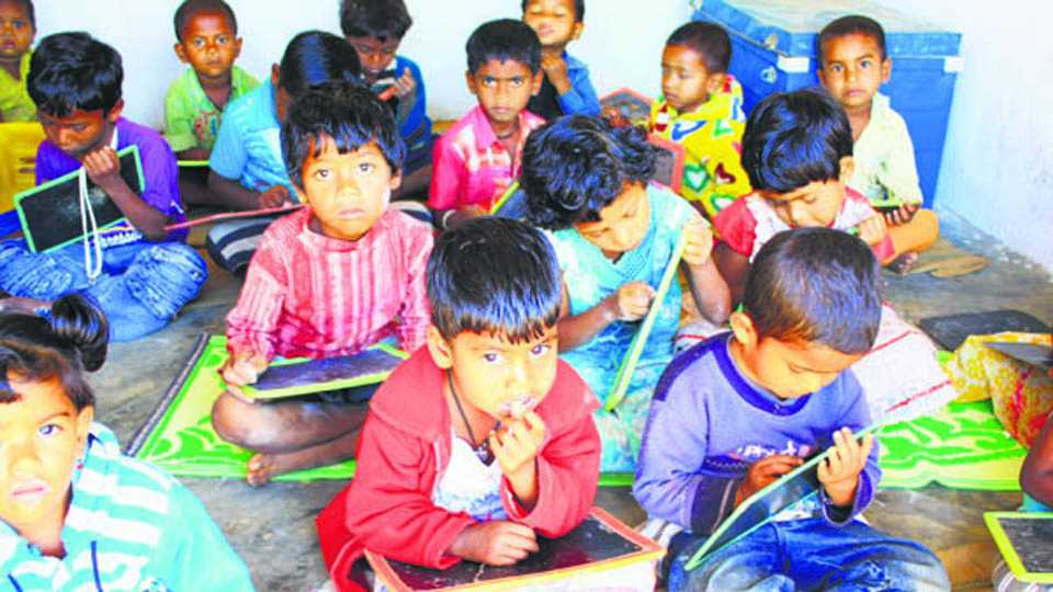 Free guidance for students from rural areas