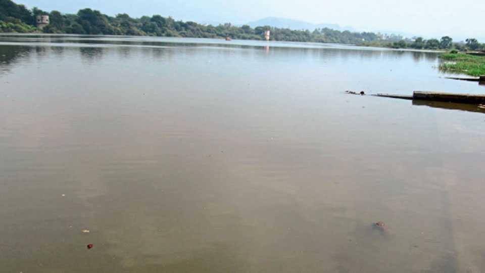 कऱ्हाड - कृष्णा नदीचे पाणी अडविल्याने प्रवाहच थांबून डबक्यासारखी स्थिती झाली आहे.