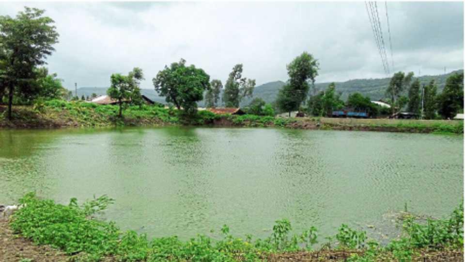 मानेगाव (ता. पाटण) - येथील तलाव पूर्ण क्षमतेने भरल्याने पाणीटंचाईपासून ग्रामस्थांची सुटका झाली आहे.