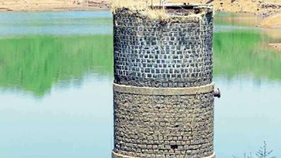 नारगोली - नारगोली येथील धरणात असलेला पाण्याचा साठा.