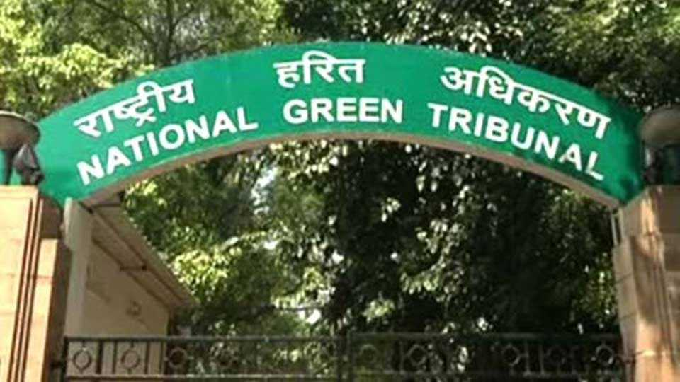 National-Green-Arbitration