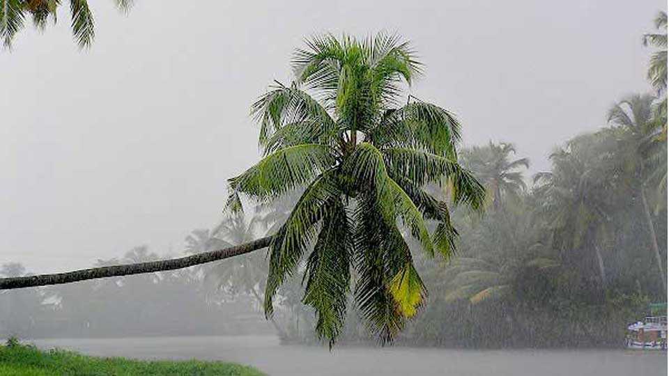Rain_monsoon_