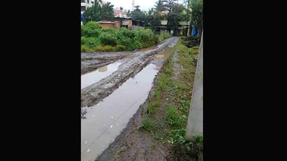 Roads in Shirala is closed with rain water