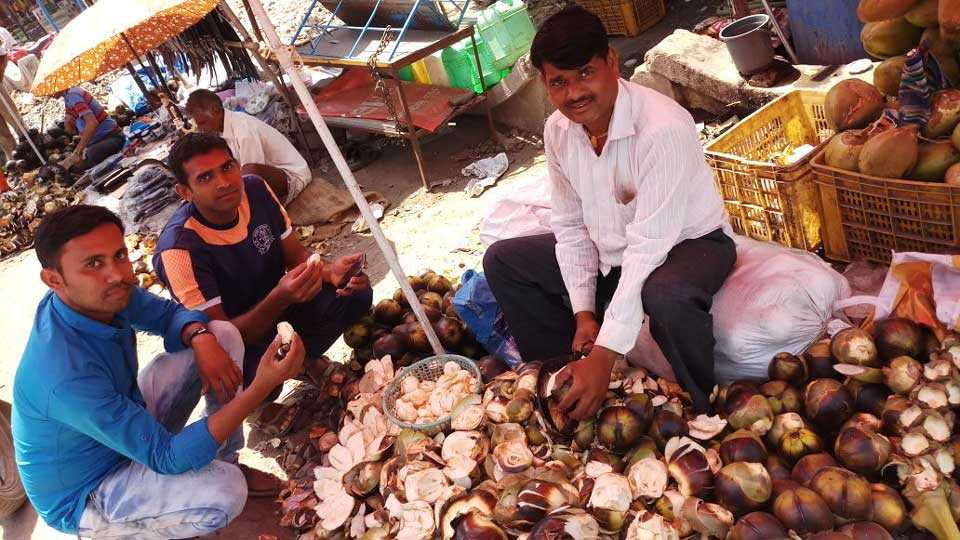 Tadagale filed for sale in the market
