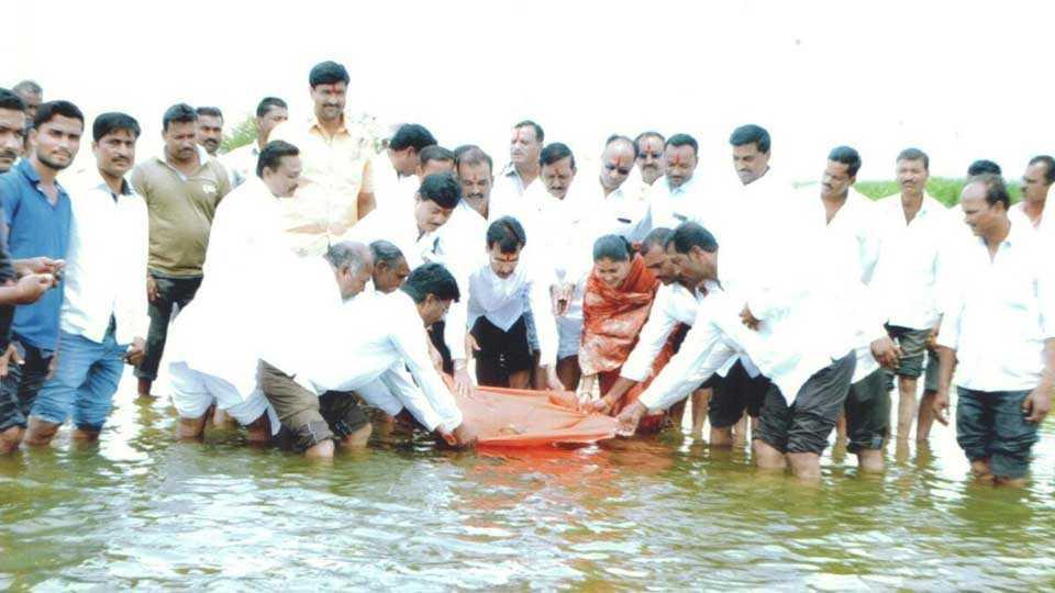Pathri dam in Barshi