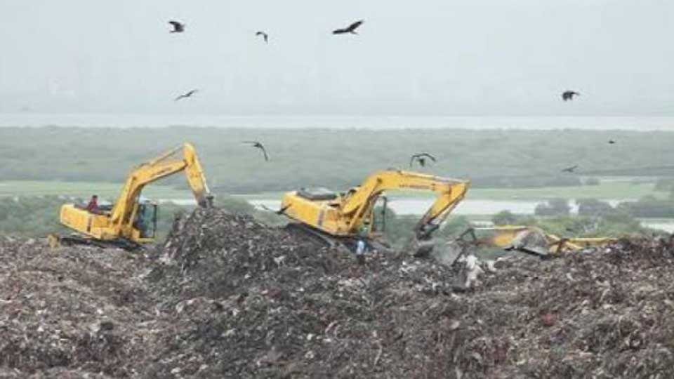 deonar-dumping-ground