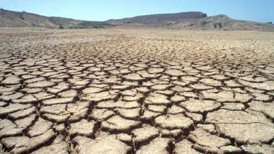 Taxes Recovery done in the drought prone areas