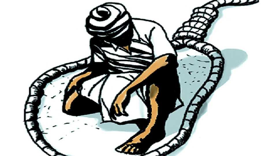 marathi news vidarbha farmer agriculture government