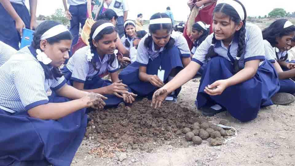 Ten Thousand students made seedballs in boripardhi kedgaon