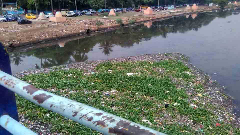 nadi-pollution.jpg