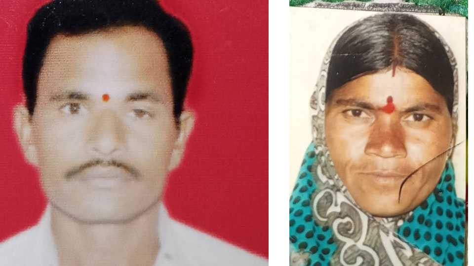 husband Suicide after killed wife