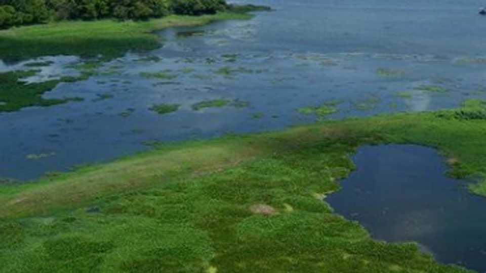 pawai-lake