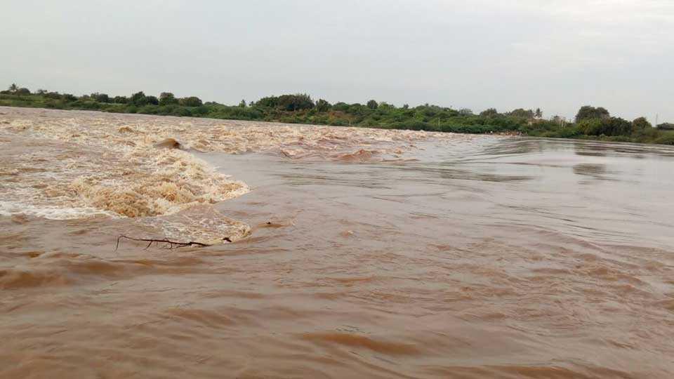 rain in Akkalkot