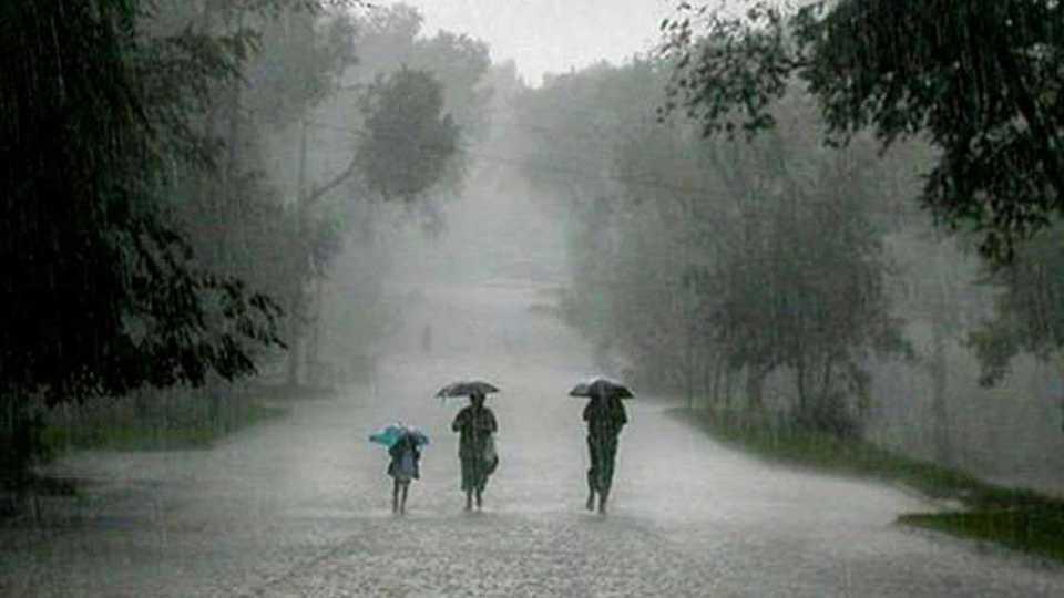 Dhangar community dindi for rain