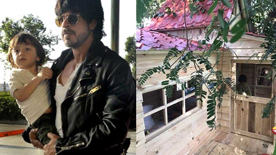Shah Rukh Khan's son, Tree House