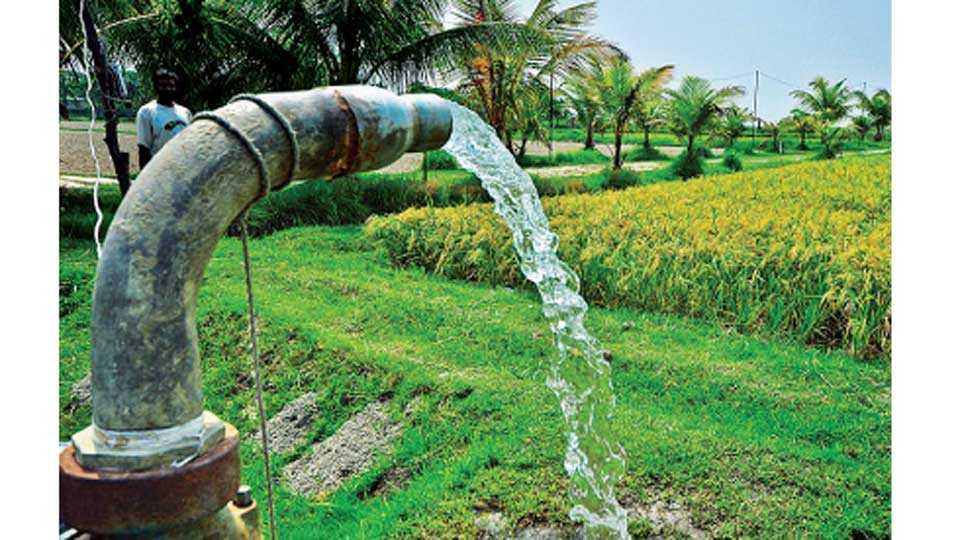 Agriculture-Pump