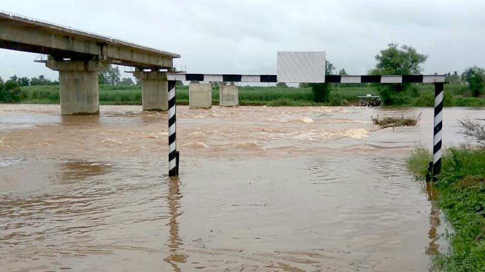 Dudhgaon Khochi dam is under water Miraj West to Kolhapur connection lost