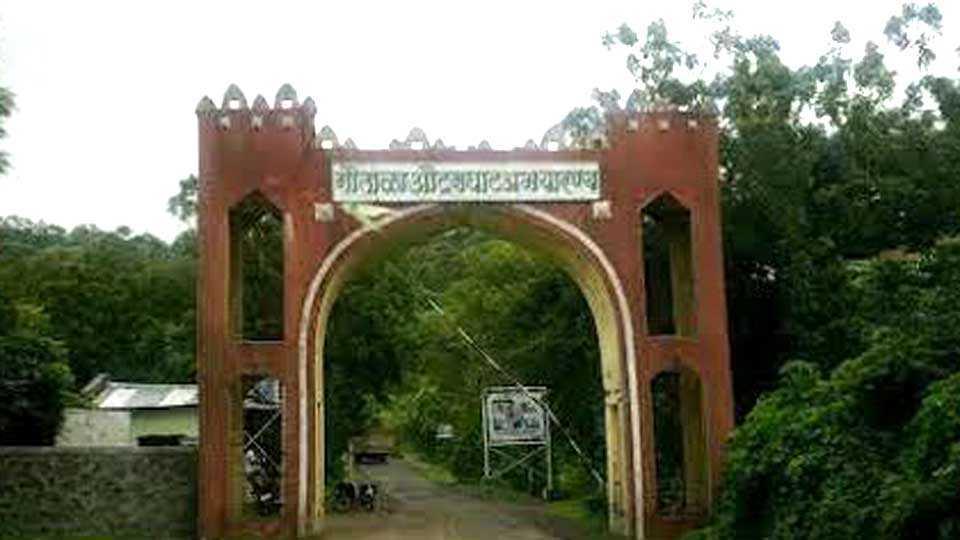 Gautala-Forest