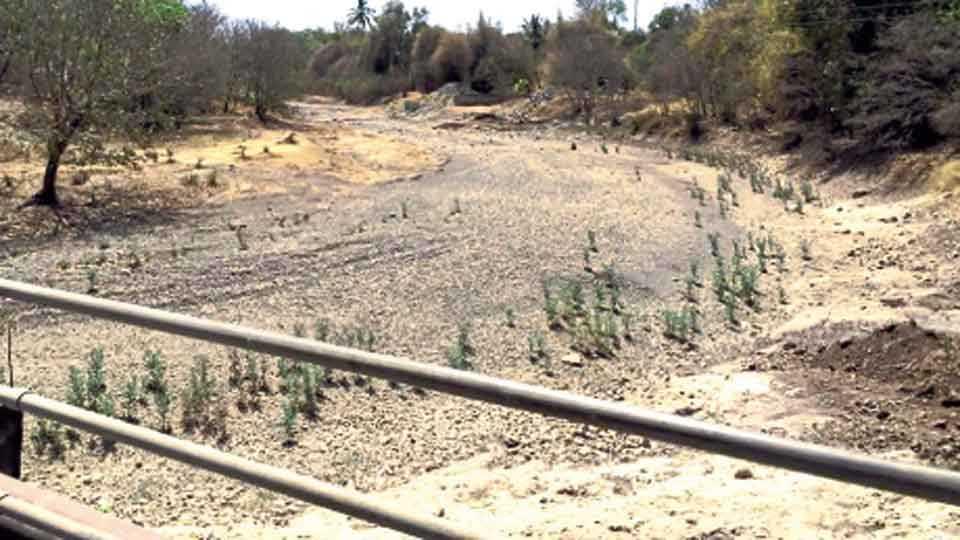 ओंड - उन्हाळ्याच्या तोंडावरच कोरडी पडलेली दक्षिण मांड नदी.