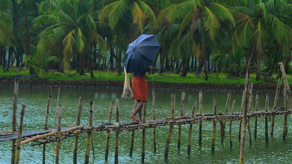 monsoon arrive in andaman latest updates