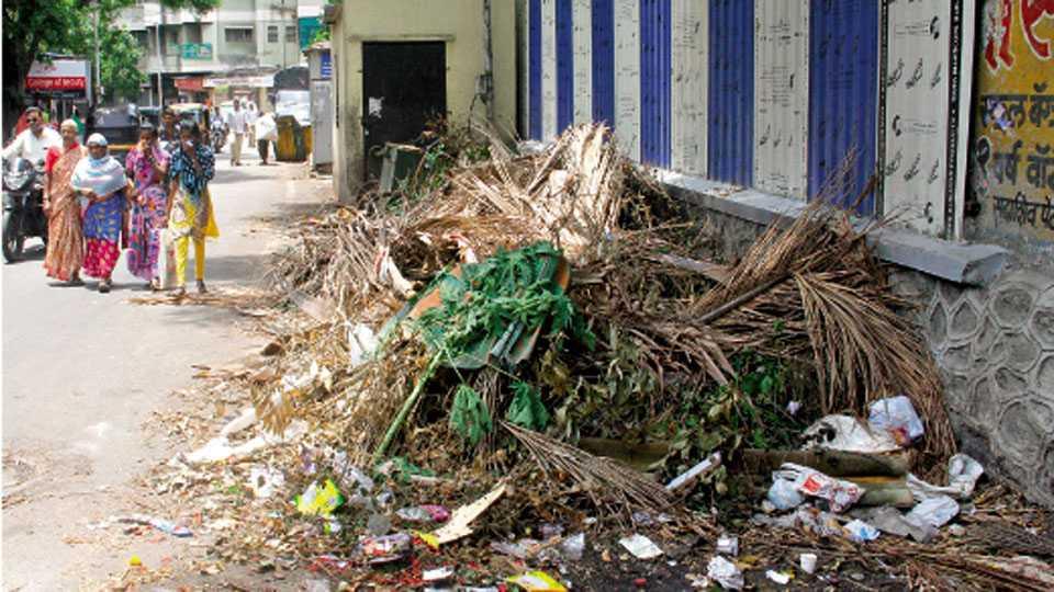 नवी पेठ - रामबाग कॉलनी येथील कचरा पेटीजवळ पडून असलेल्या नारळाच्या झावळ्या व झाडांचा पालापाचोळा.