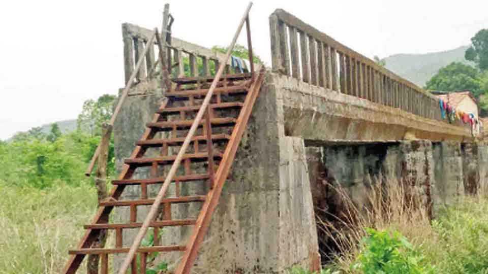 संगमेश्वर - धामणी येथील साकवाला लोखंडी शिड्या लावण्यात आल्या आहेत.