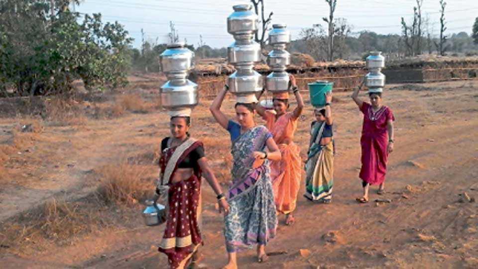 चिपळूण - टंचाईग्रस्त गावांतील महिलांना पाण्यासाठी अशी भटकंती करावी लागते.