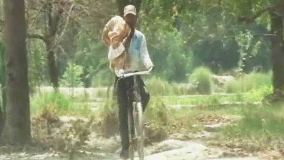 Denied ambulance, man carries body of 7 month old niece on cycle for 10 km