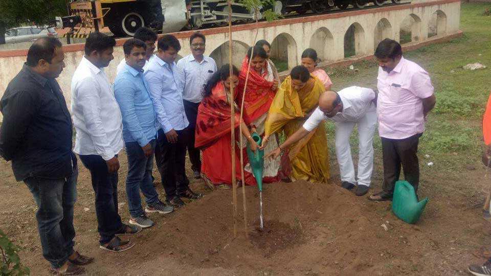 baramati news pune news tree plantation sunetra pawar
