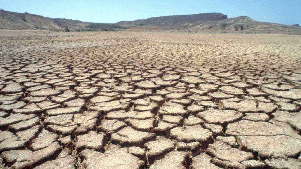 marathi news buldhana drought free campaign maharashtra