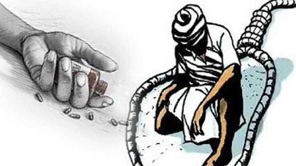 farmers suicide