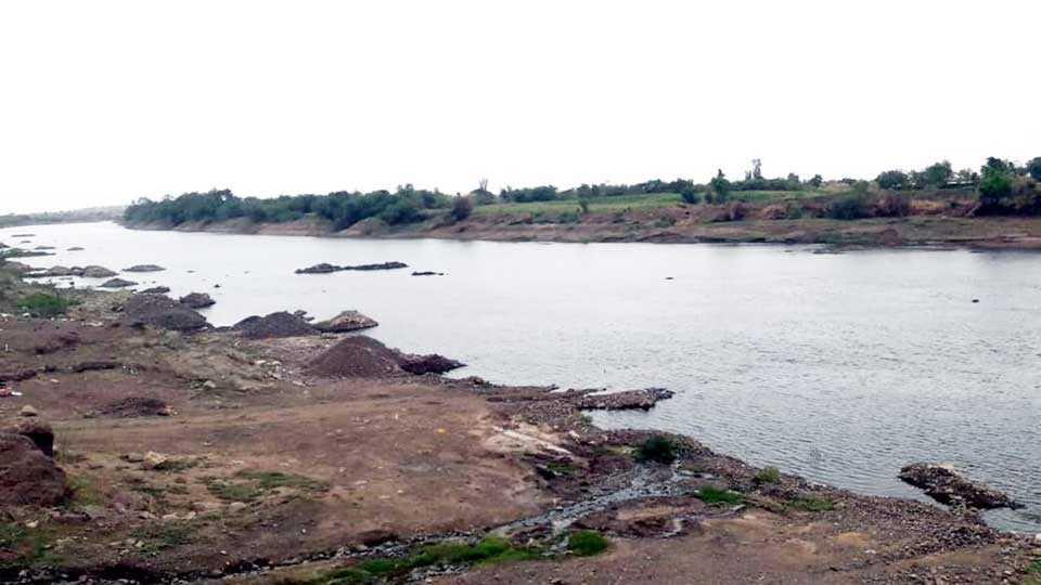Nimsakar, Nirajangi Peras, river side farmers happy