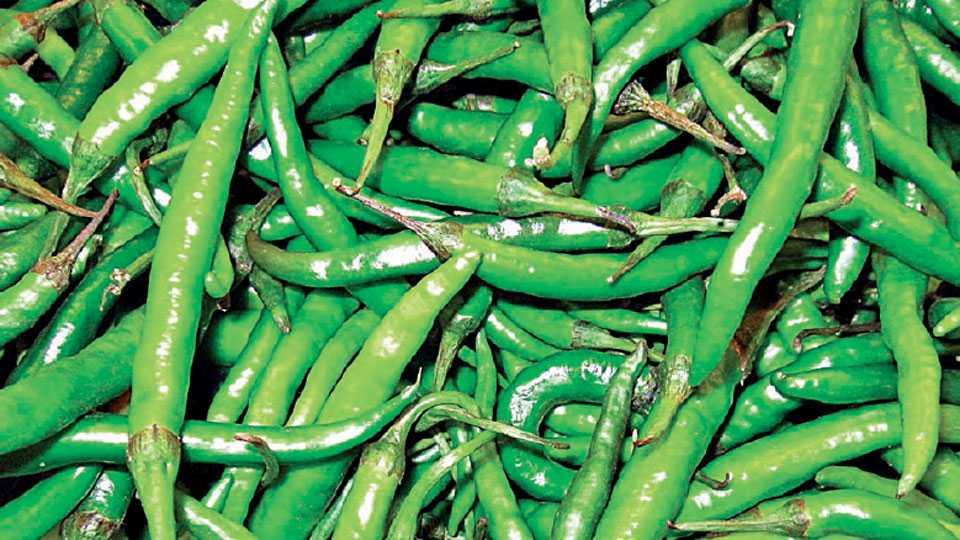 greenchili