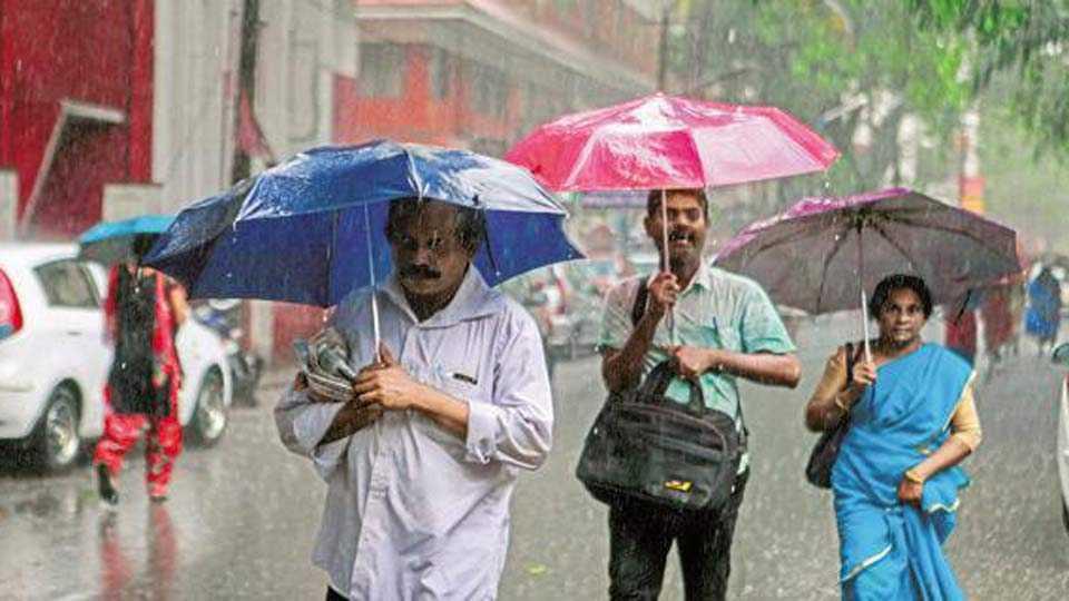 Southwest monsoon hit to Andaman Nicobar Islands : IMD