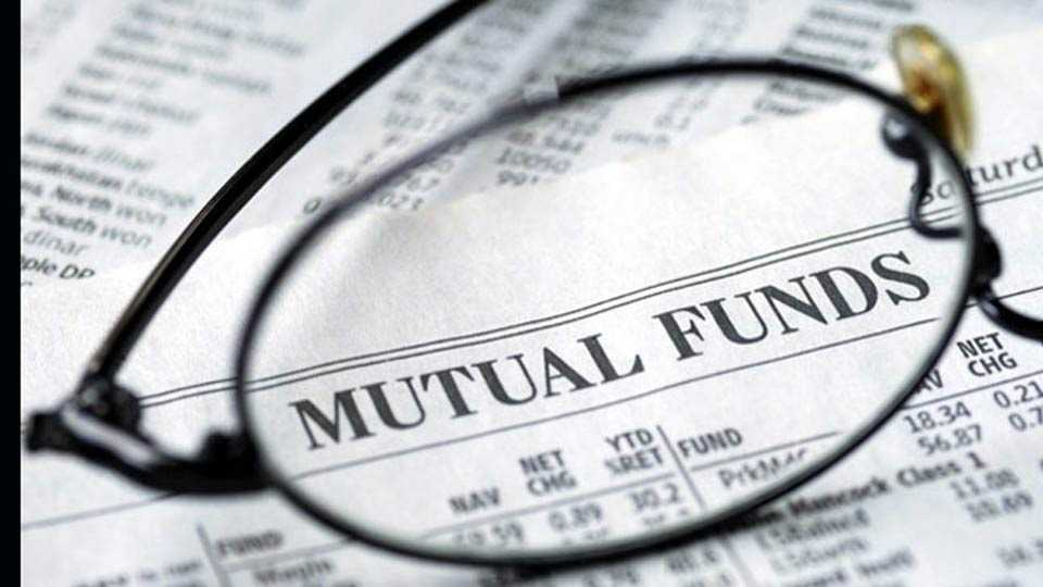 all investor have large cap mutual fund must
