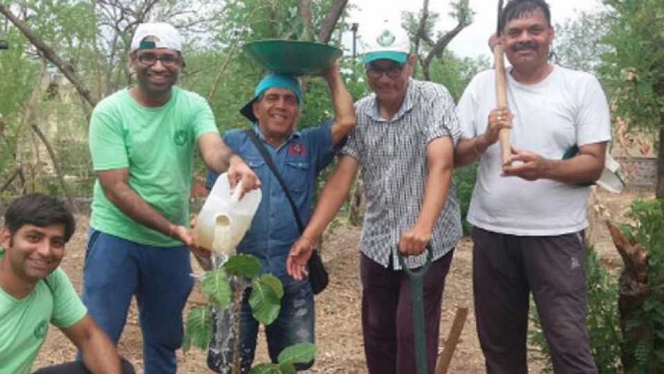 Anandvan nature organisation