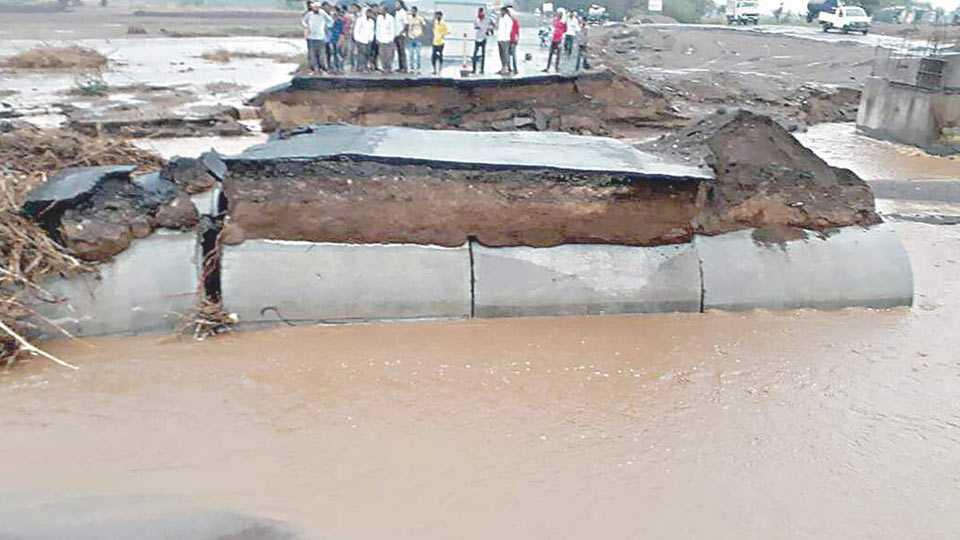 Dhule news rain in dhule
