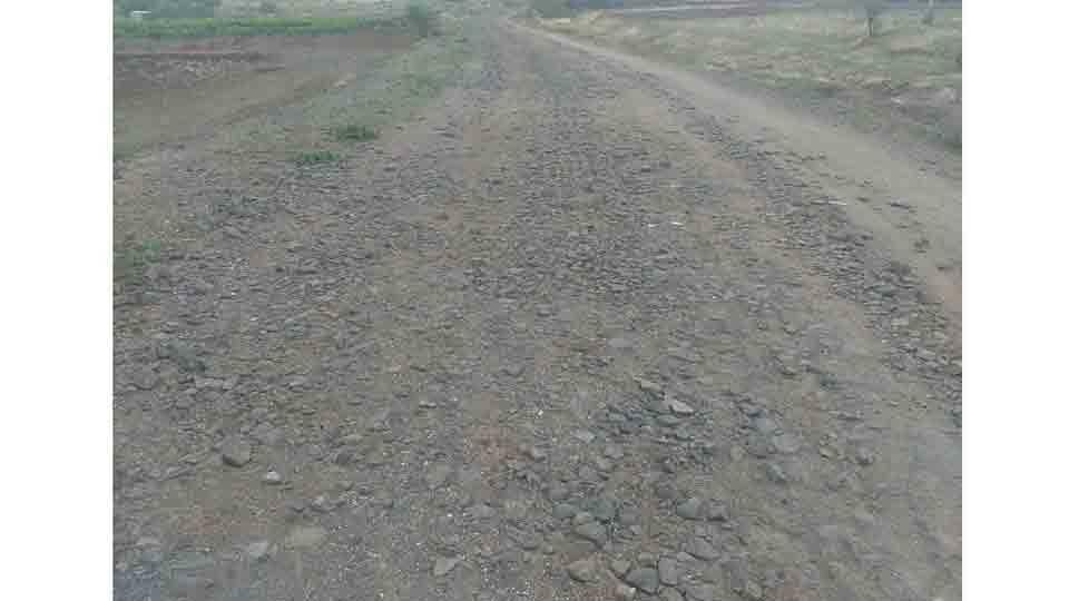 Bad condition of palkhi road of sant eknath maharaj at paithan