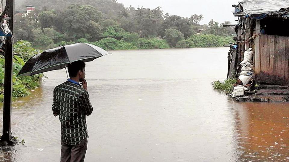Kokan Rain
