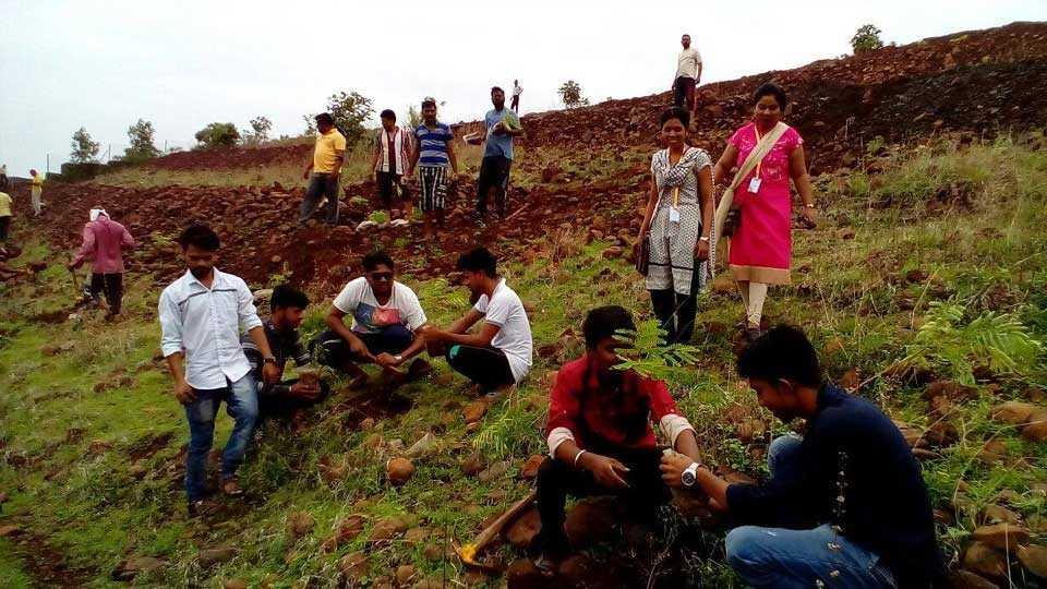 vardha news sakal news marathi news tree plantation