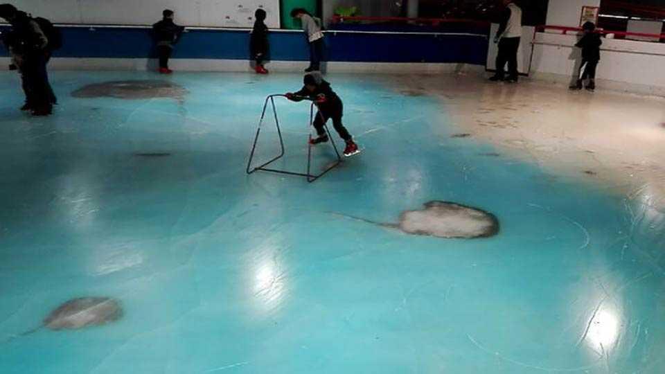 स्केटिंग रिंगसाठी पाच हजार जलचरांना गोठविले