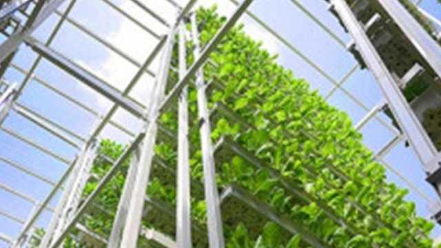 vertical_farming