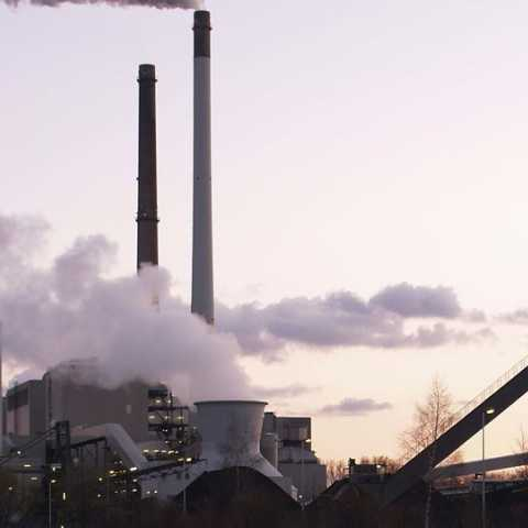 carbon industry