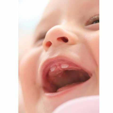 milk-tooth