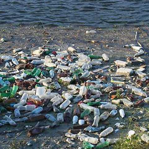 Jitendra Chandorkar blog on environment and contemporary issues
